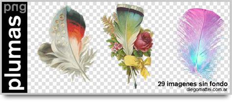 imagenes sin fondo formato plumas en png sin fondo
