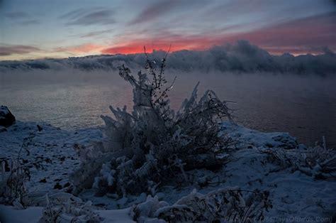 sea smoke the beauty of remote birding 365 days of birds