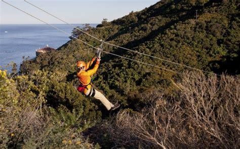 charter boats catalina island catalina island getaways southern california fishing