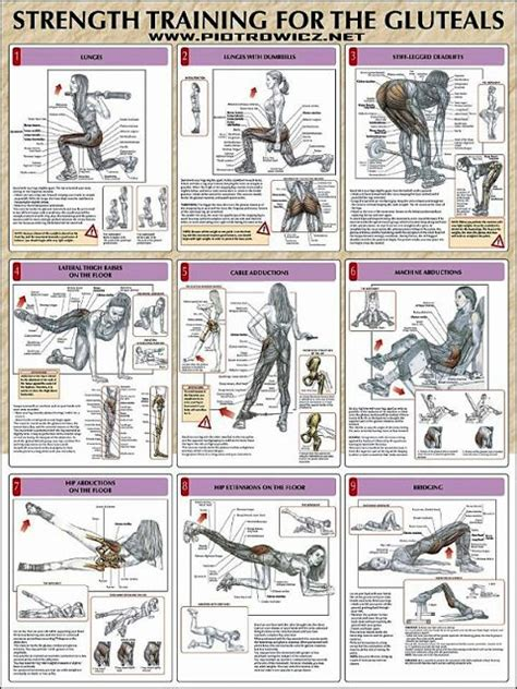 best 25 glute workouts ideas on posture