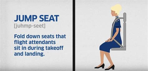 united answers your questions about being a flight attendant