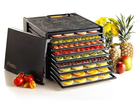 Dehydrator Food how to find the best food dehydrator the definitive guide