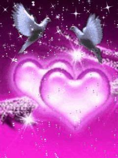 wallpaper rose bergerak angeles de colores buscar con google purple pinterest
