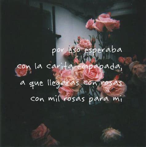 Imagenes De Amor Con Flores Tumblr   frases con fondo de flores tumblr buscar con google