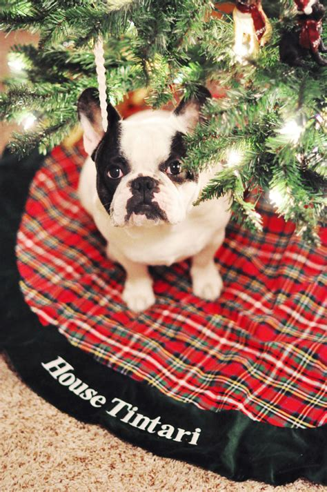 French Bulldog Giveaway - personalize your christmas tree 500 giveaway love maegan