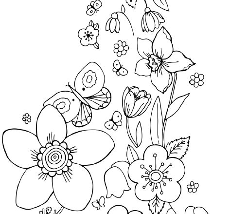 coloring pages of birds and butterflies coloring pages of flowers and butterflies c l r the