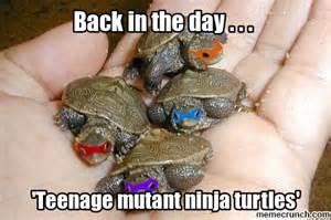 Teenage Mutant Ninja Turtles Meme - teenage mutant ninja turtles
