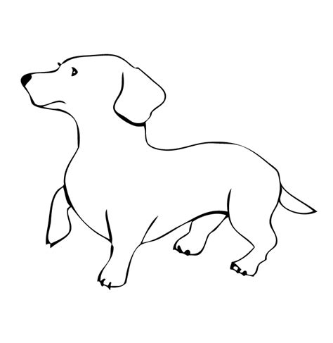 puppy outline bone outline cliparts co