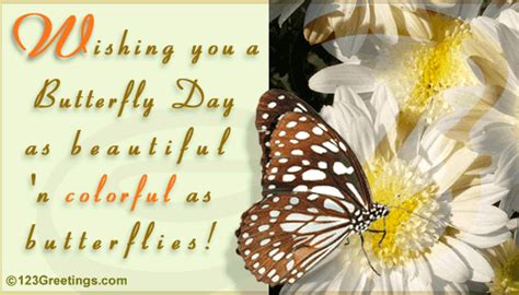 beautiful  colorful  butterfly day ecards greeting cards