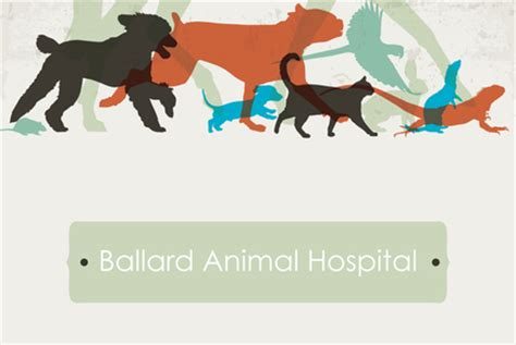 powerpoint templates for veterinarians veterinary logo template inkd