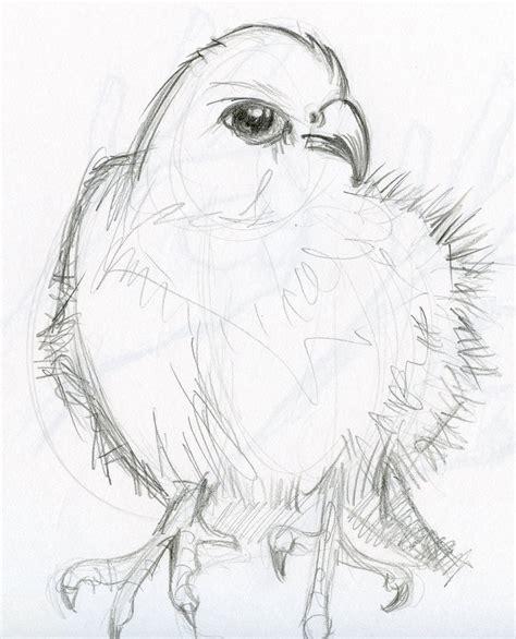 pencil sketches drawing pencil sketch animals by phebron on deviantart