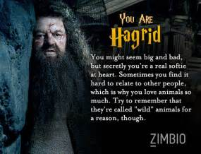 which harry potter character are you quiz zimbio