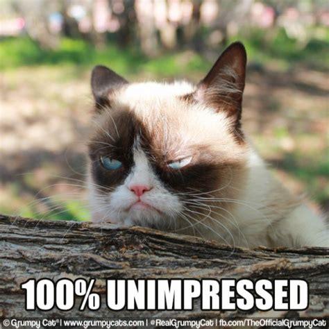 Unimpressed Meme - the curse of the facebook meme never trust a jellyfish