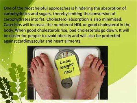 green tea tablet green tea tablets weight loss youtube