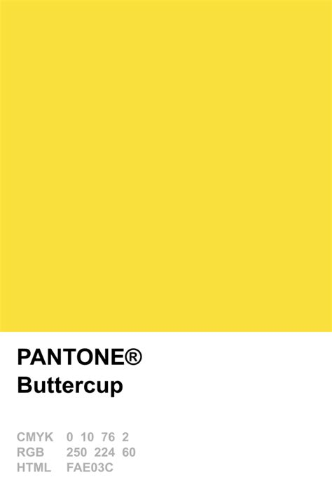 buttercup color pantone 2016 buttercup 綵uto lemon zest buttercup