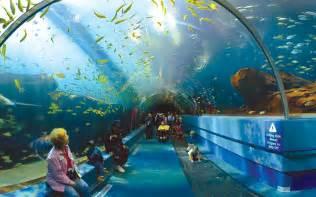 l aquarium world visits aquarium in united states