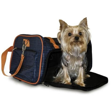 in cabin pet travel should i buy the in cabin pet carrier my airline sells or