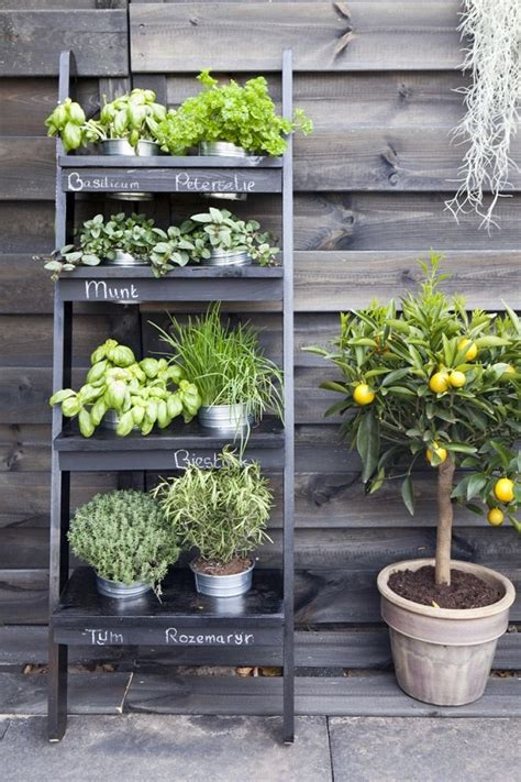 Small Herb Garden Ideas How To Grow A Herb Garden Design Ideas For Outdoors And Indoors Deavita