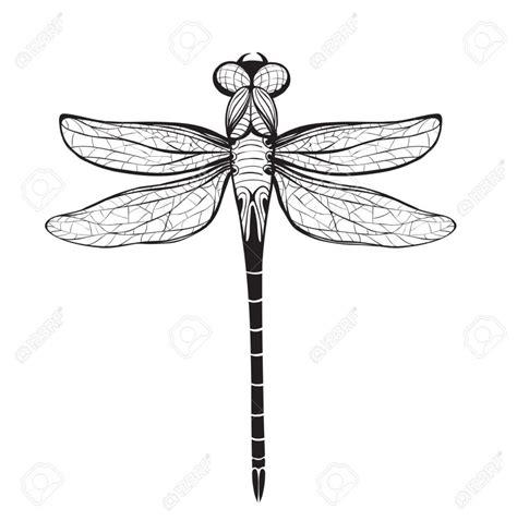 Design Drawing dragonfly outline clipartion com