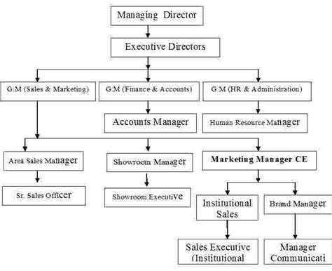 flowchart of hospital management system report on hospital management system analysis assignment