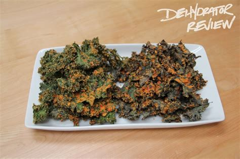 kale roundup six recipes for dehydrated kale chips dehydrator review