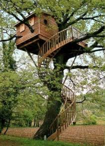 amazing worlds tour beautiful and amazing tree house pictures