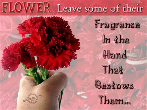 Flower Quotes Flower Quotes About Friendship Quotesgram