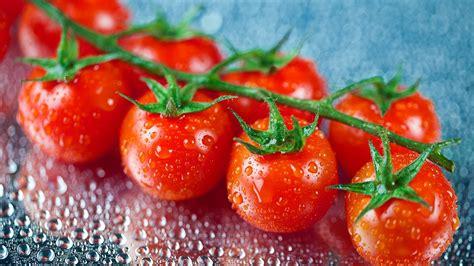 2560x1440 Fresh Cherry Tomatoes desktop PC and Mac wallpaper