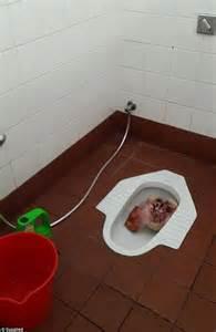 muslim bathroom western australia university s mosque sees bloodied pig s