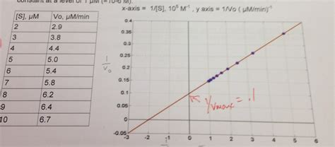 how to calculate vmax and km from a lineweaver and burk plot youtube you measure the kinetics of an enzyme e as a funct