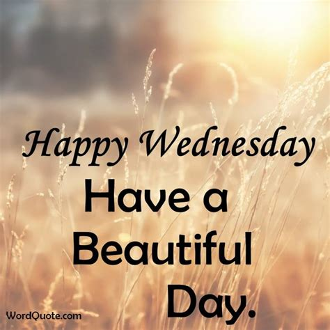 wednesday quotes happy wednesday quotes and images word quote quotes