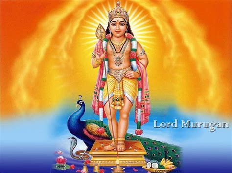god murugan themes download ganesh utsav navratri utsav ganesh wallpaper navratri