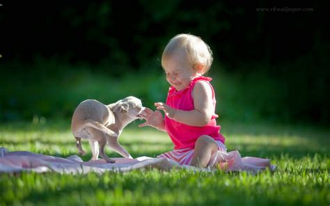 how often do newborn puppies eat baby with pet dogs images quotes and wallpapers