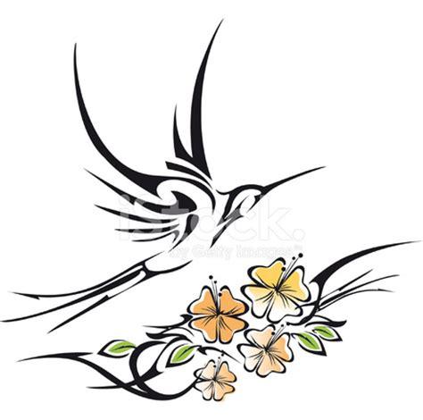 tribal hummingbird tattoo tribal hummingbird and hibiscus stock photos