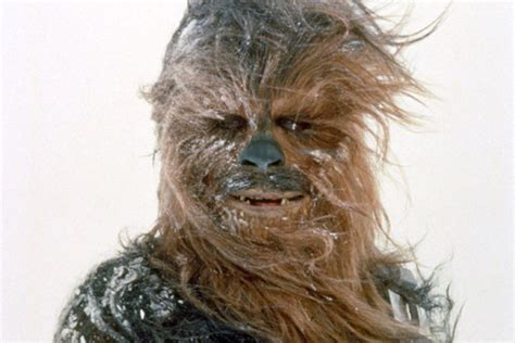 Star wars episode 7 first look at chewbacca