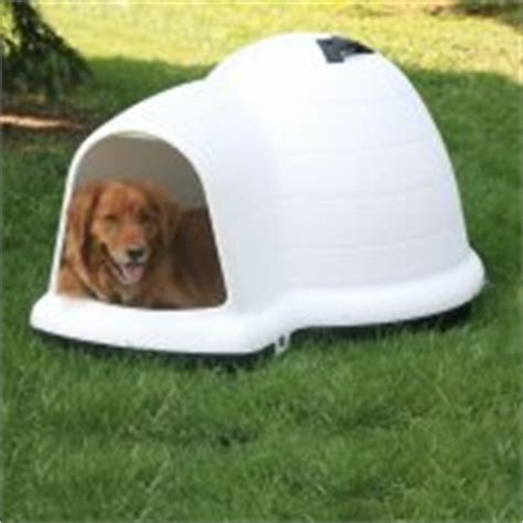 igloo style dog house unique dog houses gallery spoil rover with a dog house he can be proud of