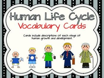 vida 3 0 life 3 0 being human in the age of artificial intelligence spanish edition human life cycle vocabulary cards by completely