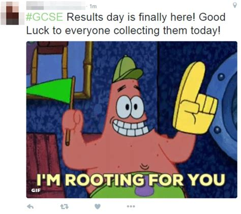 Gcse Results Meme - resits branded a waste of time as only one in five manages