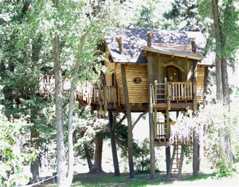 cool tree house designs cool tree houses kids tree house designs small and artistic tree house design by