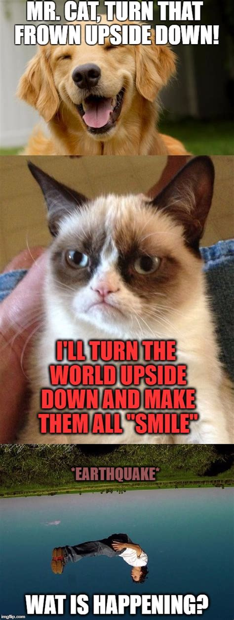 Frown Cat Meme - it is an earthquake or a giant grumpy cat imgflip