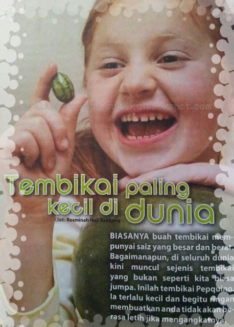 Minyak Zaitun Paling Kecil kisah pelik buah tembikai terkecil di dunia fizalinolie