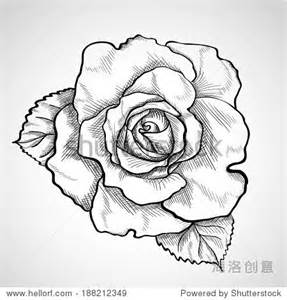 手绘玫瑰花图片铅笔画 步骤 图片素材