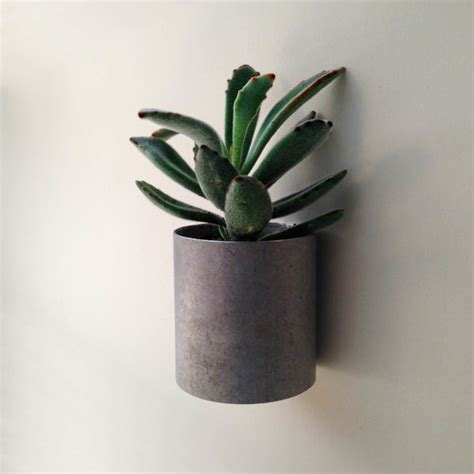 Small Metal Planter by Wall Planter Small Metal Planter Modern Planter For Succulents Andrew S Reclaimed Pinklion