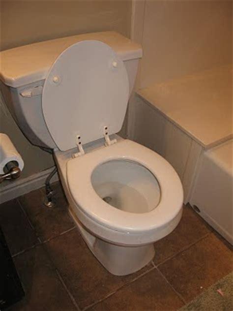 biscuits  gravy   toilet seat left