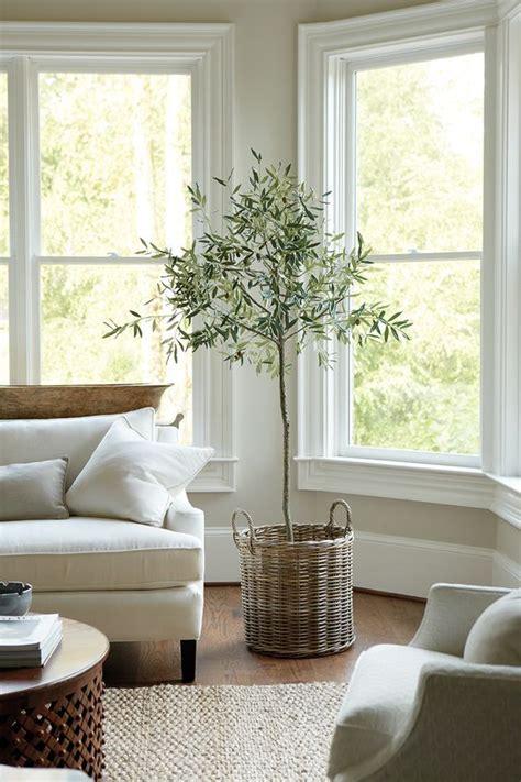 artificial living room plants 25 best ideas about plants on succulent plants landscaping ideas for
