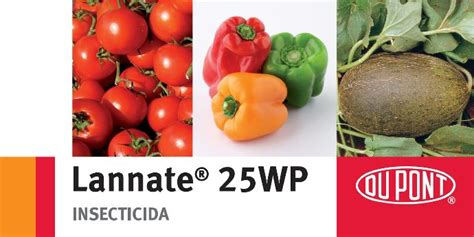 Dupont Lannate 25 Wp Insektisida lannate 25 wp novos lmrs dupont protec 231 227 o de culturas portugal dupont portugal