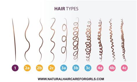 whats the best kind of hair for latch hook hair styles 17 best ideas about natural hair type chart on pinterest