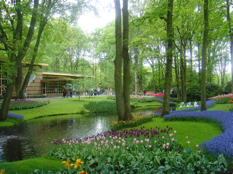 imagenes jardines keukenhof descubre tu mundo destino los espectaculares jardines de