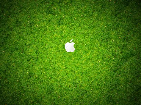 wallpaper hd green grass 30 wallpaper apple green grass hd wallpapers 1845