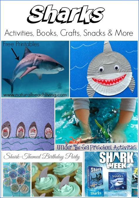 Project Awesome Of The Week by Best 25 Shark Activities Ideas On Shark Week